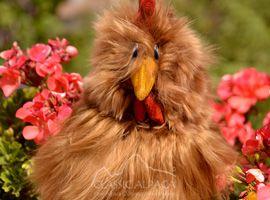 PREMIUM Baby Suri Fur - Hen Ornament