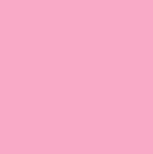 Rose Scallop Lace Alpaca Scarf