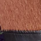 Alpaca Coat Leather Belt in Brick-Black