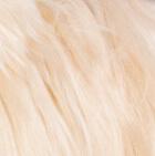 "BABY Alpaca Suri Fur-Standing Alpaca 9"" / Various"